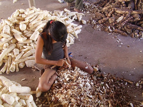 trabalho infantil - repórter brasil